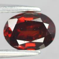gemstone: โกเมน-Garnet size: 8..0x6.0x4.0 carat: 1.60Ct.