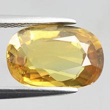 gemstone: บุษราคัม-Yellow Sapphire size: 12.6x8.5x4.8 carat: 5.50Ct.